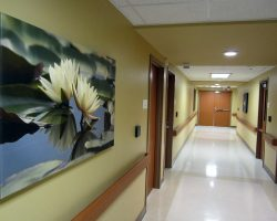 Sentara Virginia Beach General Hospital Behavioral Health Unit
