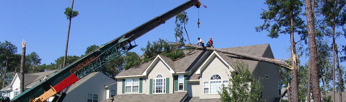 Newport News Crane Service